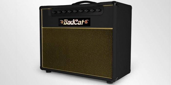 Bad Cat Amps Kool Cat 30R 2x12 Combo