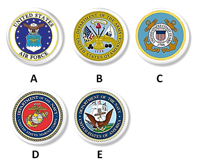 Branches of the US Armed Forces Drawer Pull
