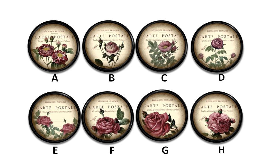 Chic French Antiqued Rose Knobs | Pulls - No. 815J37 - Handcrafted 360