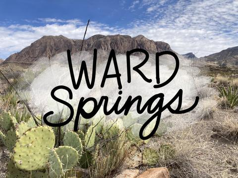 Ward-Springs-Big-Bend-National-Park