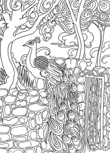 Laguna Gloria Coloring Page - Borrelli Illustrations