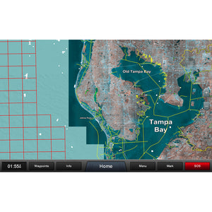 Garmin Standard Mapping - Florida West Pen Professional microSD-SD Card