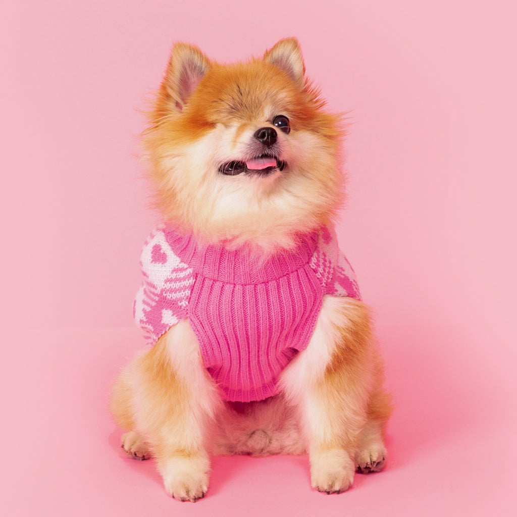 Gingham Hearts Pet Knit Sweater