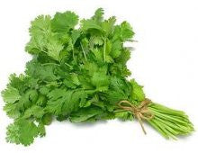 Herbs - Coriander (bunch)