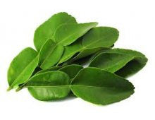 Herbs - Kafir Lime Leaves (tray)