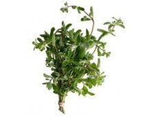 Herbs - Marjoram (bunch)