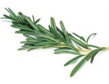 Herbs - Rosemary (bunch)