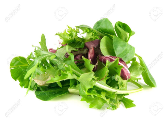 Lettuce - Baby Salad Leaves 120g