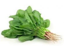 Organic Spinach - English (bunch)