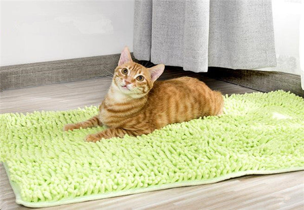 Chenille Ultra-Absorbent Pet Doormat