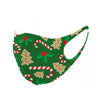 Christmas Themed Face Mask-10 pack option