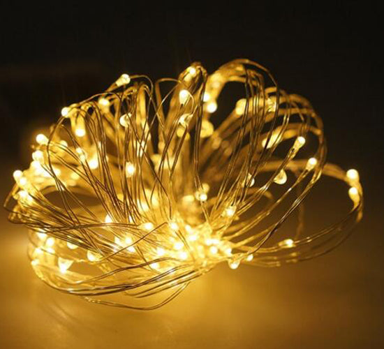 Wire Seeds String Light