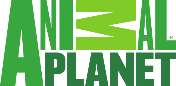 Analogous color scheme logo Animal Planet