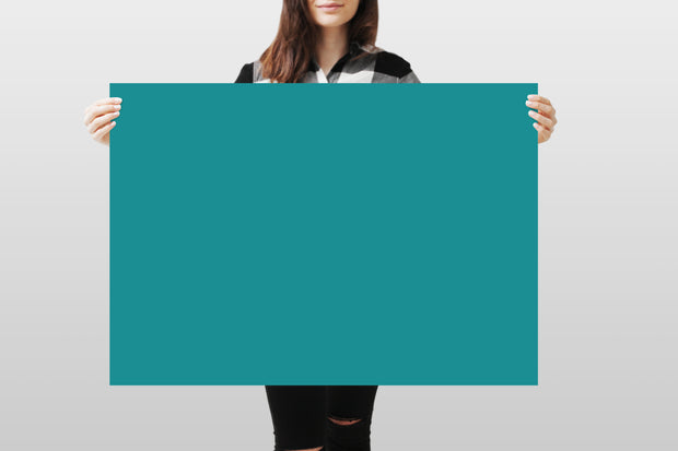 Photography Backdrop - Teal