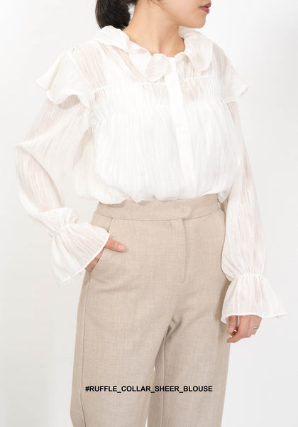 Ruffle Collar Sheer Blouse