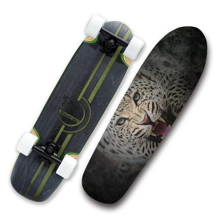 DQ-2 Penny cruiser board