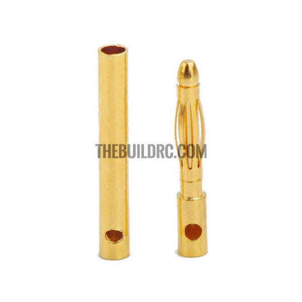 Amass 2.0mm banana plug with 24K real gold for FVP (male and female pair)