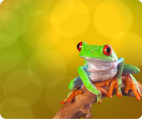 Colorful Tree Frog Thick Mouse Pad