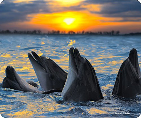 Dolphins At Sunset Thick Mousepad by Atomic Market