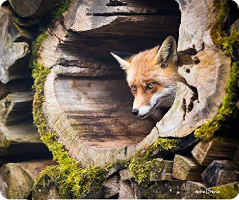 Fox In Tree Trunk Mousepad by Atomic Market