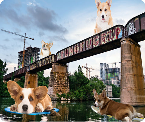 Austin Texas Lady Bird Lake Kung Fu Paddle Boarding Corgis Thick Mousepad by Atomic Market