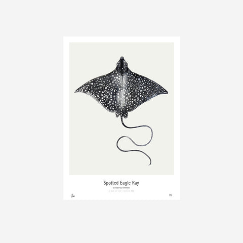 SIMPLE FORM. - My Deer - Eagle Ray Watercolour Print - Prints