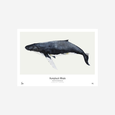 SIMPLE FORM. - My Deer - Whale Watercolour Print - Art Prints