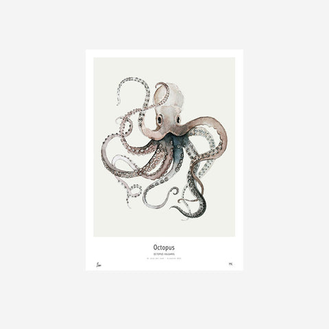 SIMPLE FORM. - My Deer - Octopus Watercolour Print - Print
