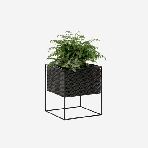 Redfox and Wilcox - Perforated Planter Box Low Black - Planter  SIMPLE FORM.
