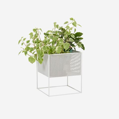 Redfox and Wilcox - Perforated Planter Box Low White - Planter  SIMPLE FORM.
