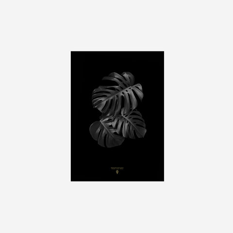 SIMPLE FORM. - Sarah Cocolapine - Monstera Deliciosa - Print