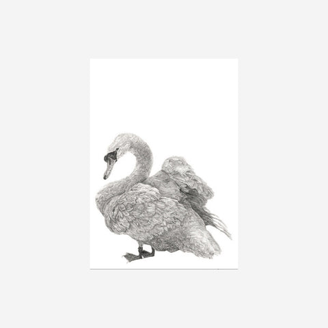 SIMPLE FORM. - Danielle Sandeman - Maggie the Swan Print - Print