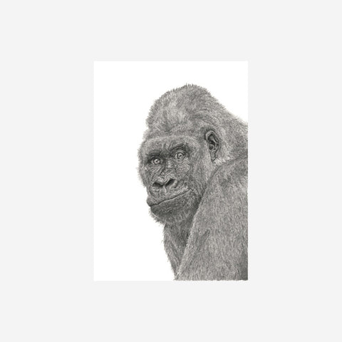 SIMPLE FORM. - Danielle Sandeman - Bruce the Gorilla Print - Print