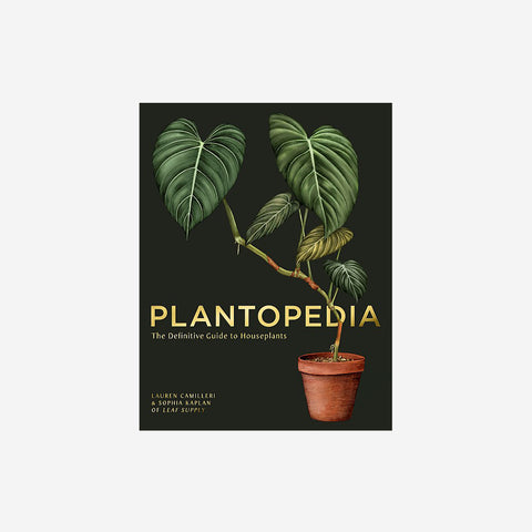 Reading Matters - Plantopedia: The Definitive Guide to House Plants - Book  SIMPLE FORM.