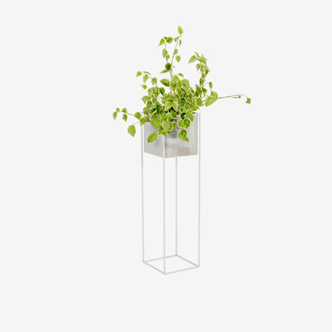 Redfox and Wilcox - Perforated Planter Box Tall White - Planter  SIMPLE FORM.