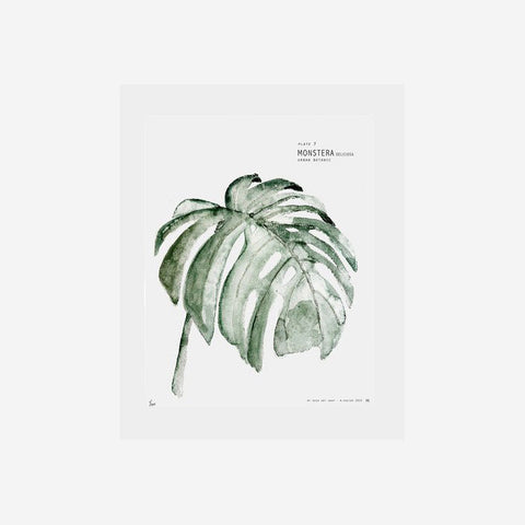 SIMPLE FORM.-My Deer Monstera Watercolour Print Prints
