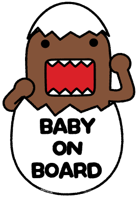 Domo Baby On Board Hatchling - Two Pack