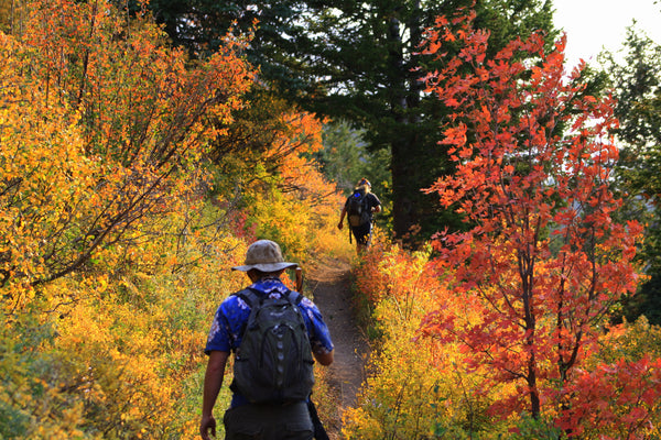 5 Fall Hikes For Students in The Pacific NorthWest
