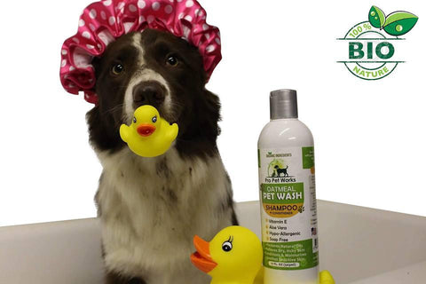 Image of Natural Oatmeal Shampoo+Conditioner In One For Dogs & Cats - Pro Pet Works