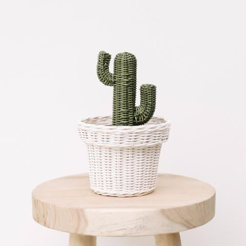Rattan Cactus Pot - White Moss Collection