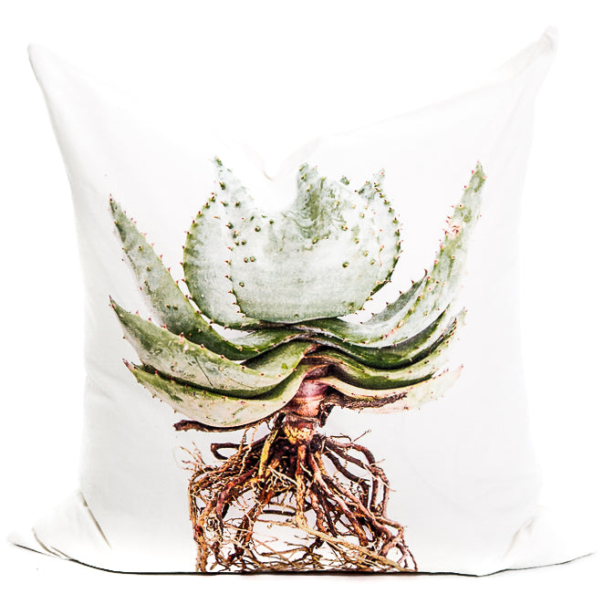 Aloe with Roots Cushion Cover