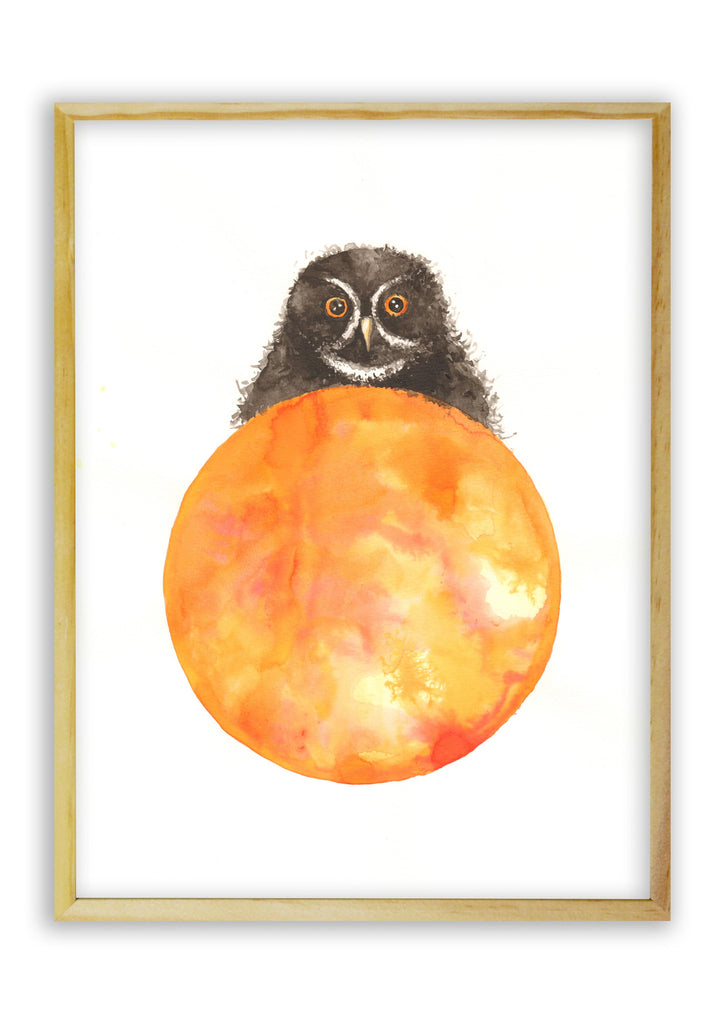 Black Owl on an Orange Ball