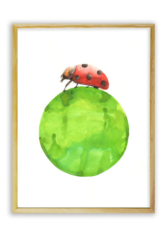 Ladybug on Green Ball