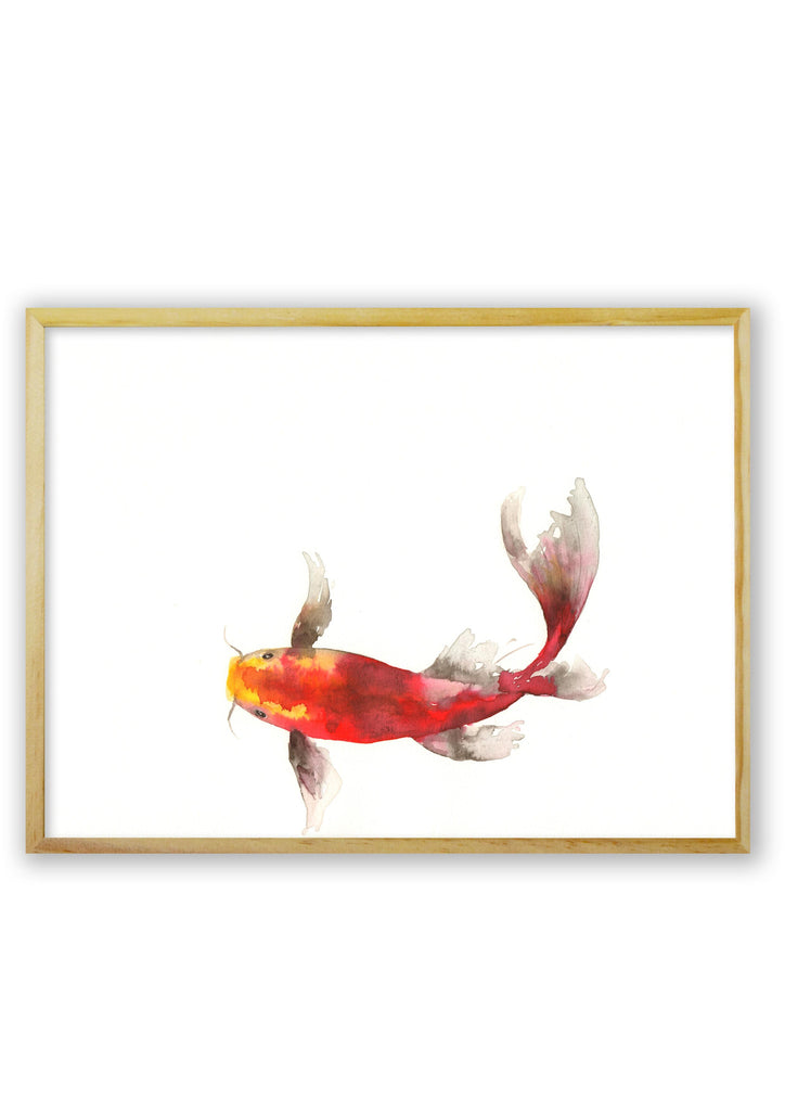 Orange and Red Koi