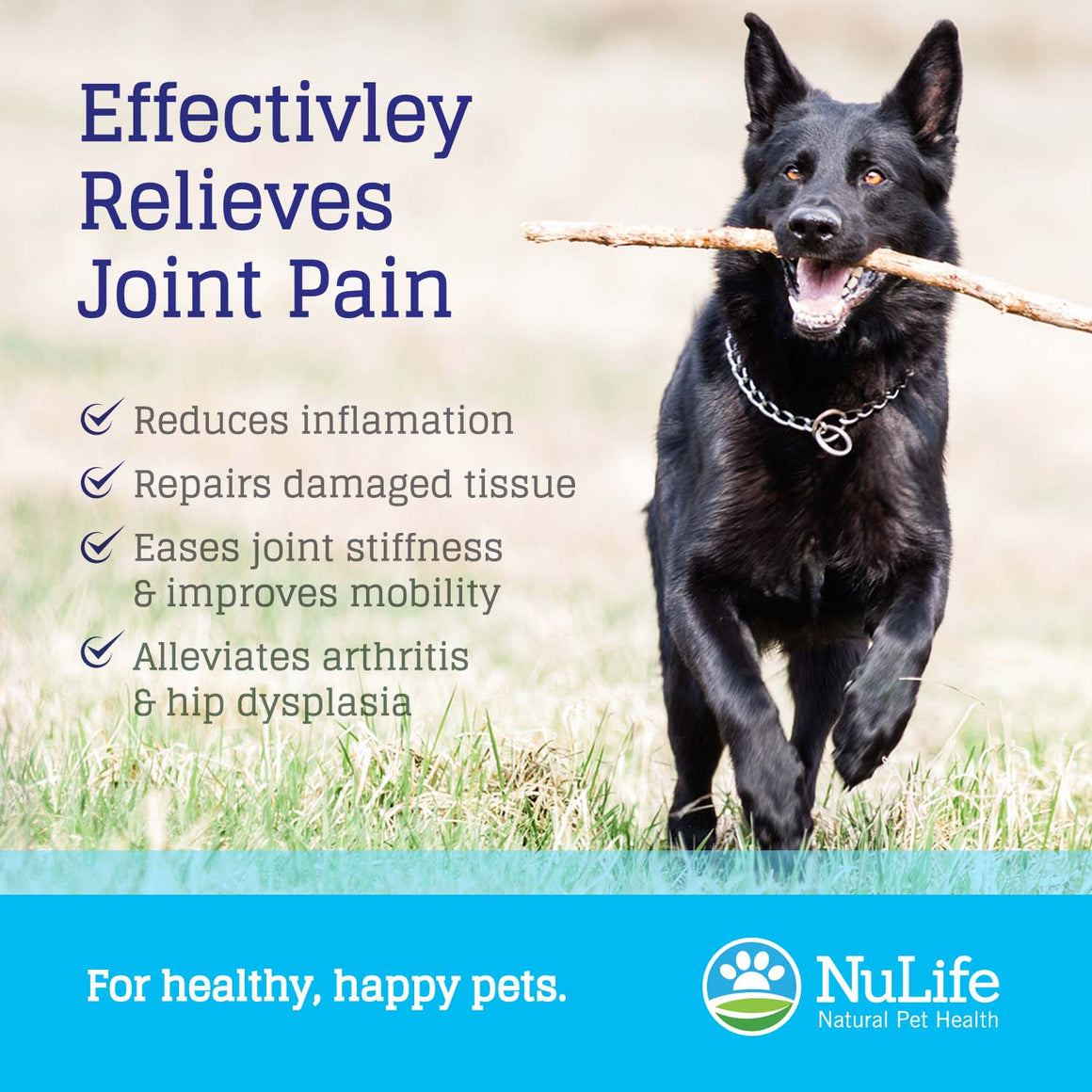 high strength joint supplements for dogs