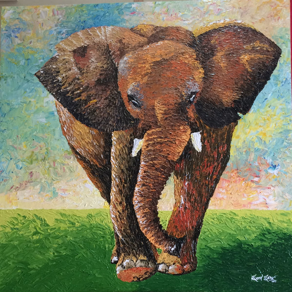 Elephant | 50 X 50 Inches