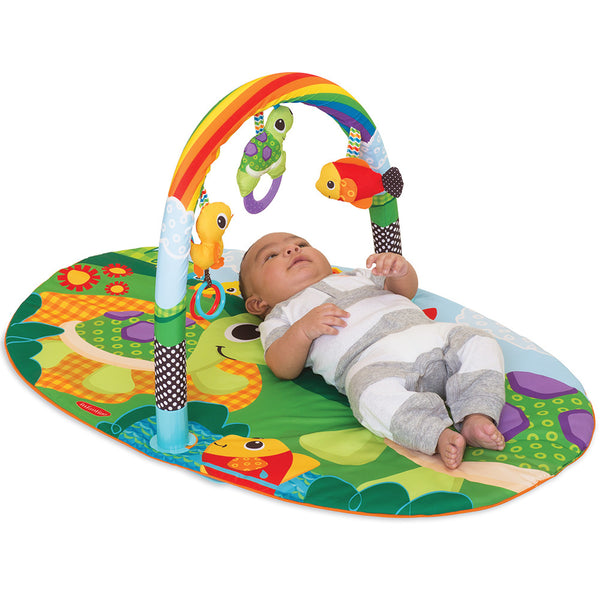 Infantino - Gym Assort - Explore & Store Activity