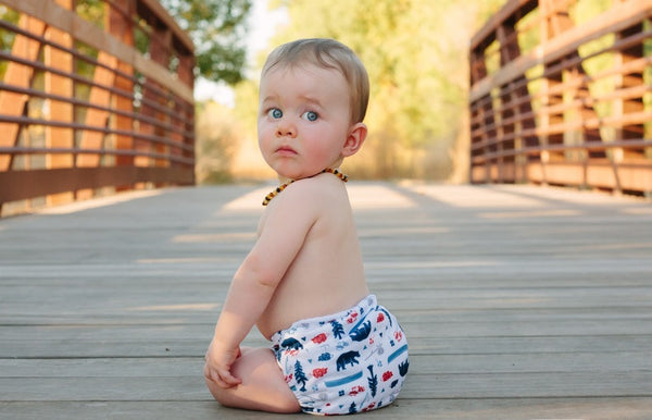 Thirsties - Baby's Cloth Diapers - One Size All In One Hook & Loop / Adventure Trail