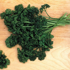 Parsley Forest Green