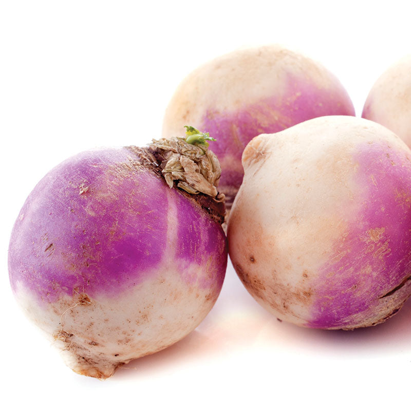 Rutabaga American Purple Top